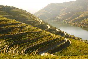 The Douro demarcated wine region - Portugal
